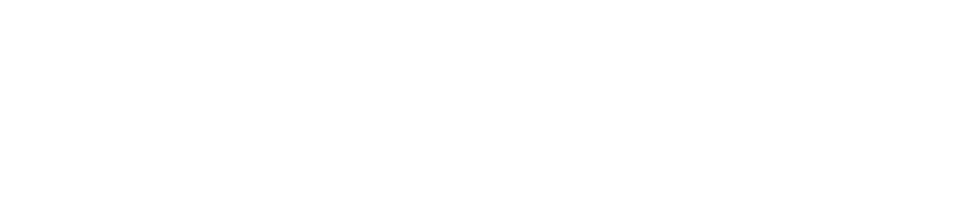 Purple bricks logo