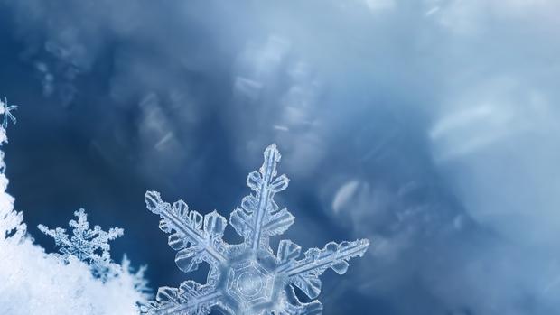 snowflake buzzword