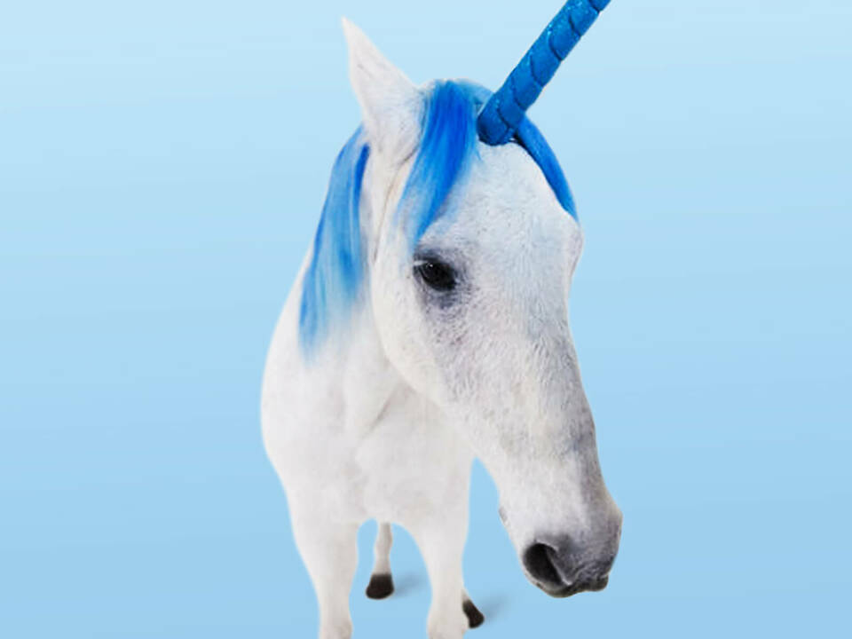 Unicorn for a day: The magic behind 'The Best Boss'