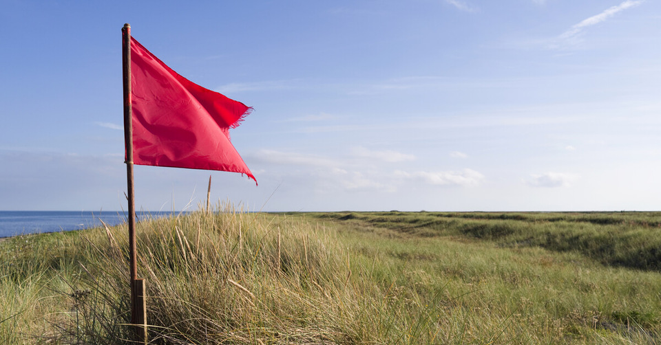Red flags for anxiety in employees